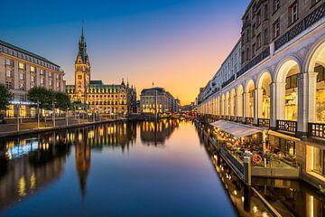 Zonsondergang bij het stadhuis in Hamburg van Michael Abid