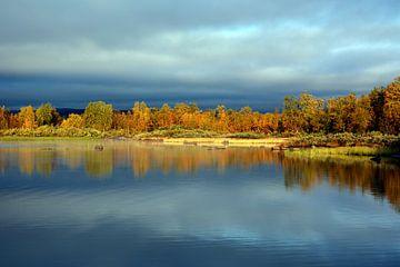 Herbststimmung am See van Wiltrud Schwantz