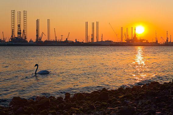Skyline van de Botlek te Rotterdam van Anton de Zeeuw