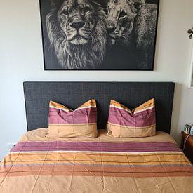 Klantfoto: Leeuw zwart wit met titel: Lion couple - Leeuwen - Liefde - Zwart wit - Afrika van Hendrik Jonkman, op canvas