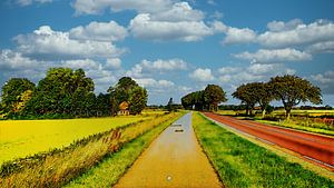 Polderweg mit Fahrradweg