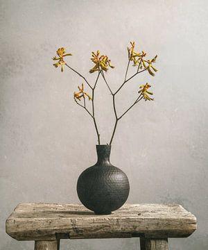 Kängurubein und schwarze Vase von Mariska Vereijken