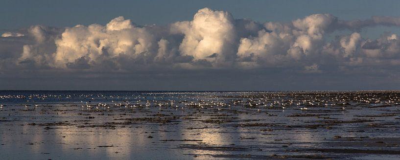 Wolken boven de drooggevallen Waddenzee bij Westhoek (Het Bildt) van Meindert van Dijk