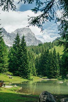 Bergsee im Grünen von Patrycja Polechonska