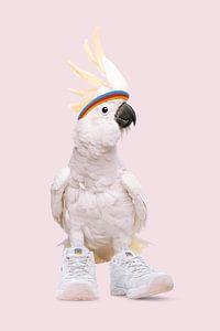 Sneaker Cockatoo von Jonas Loose