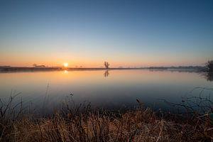 Het eiland van Meijer. van Wesley Kole