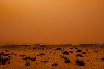 Calima - Rostbraune Landschaft von Linda Bouritius