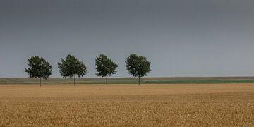 Landschap Oost Groningen van Annie Keizer
