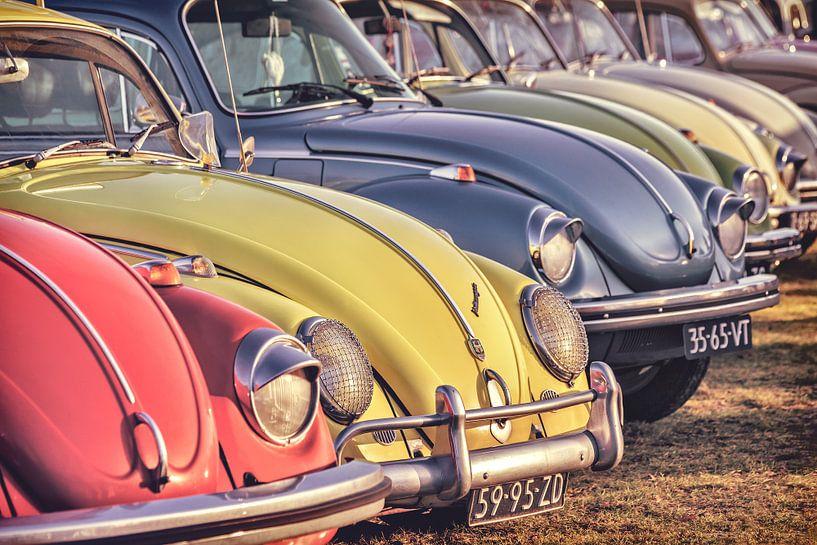 Rij klassieke Volkswagen Kevers van Martin Bergsma
