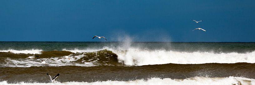 Strand en golven op Terschelling van schylge foto
