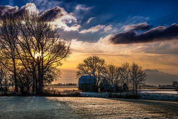 Winterzon op het Friese platteland van