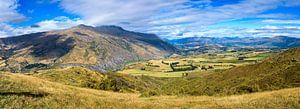 Panorama Lake County, Nieuw Zeeland van