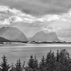 Rauer Sommer im Norden - Senja Norwegen von Gisela Scheffbuch