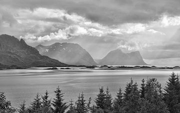 Ruwe zomer in het noorden - Senja Noorwegen van Gisela Scheffbuch