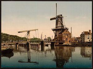 Catharijnebrug, Haarlem
