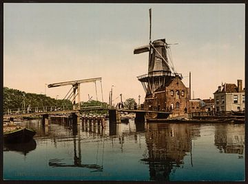 Catharijnebrug, Haarlem von Vintage Afbeeldingen