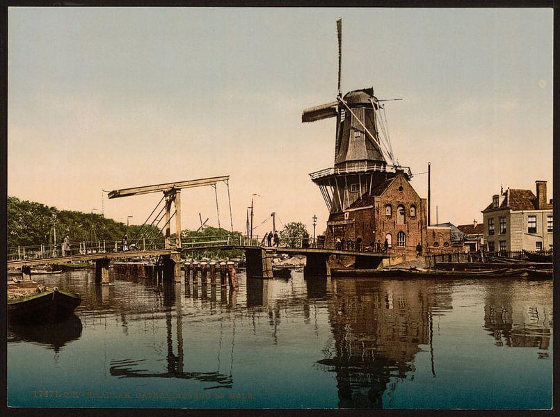 Catharijnebrug, Haarlem van Vintage Afbeeldingen
