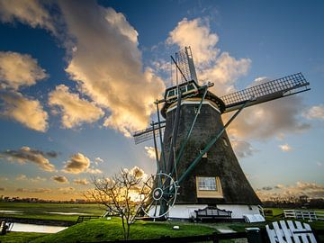 Hollandse held van