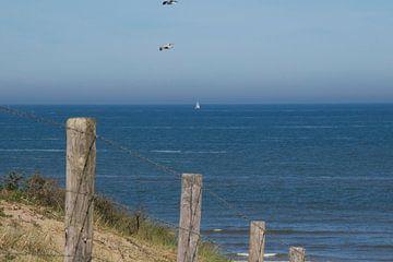 Strandopgang met de zee op de achtergrond van Rianne Ouwerkerk