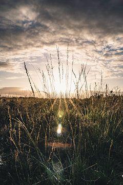 Sonnenuntergang auf der Veluwe II von Colin van Wijk