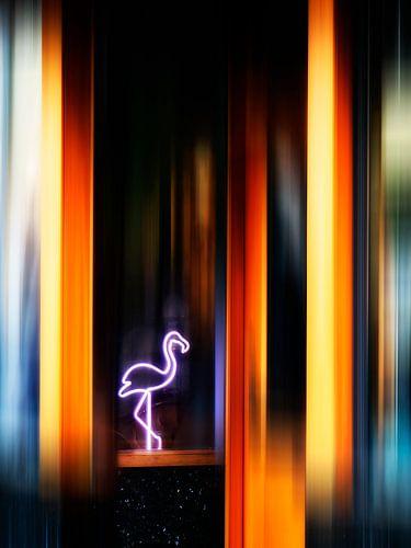 Flamingo Club van