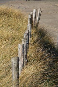 Zaun auf der Düne von Corinna Vollertsen