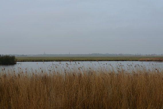 Broekpolder uitzicht op Maasland van Hanneke Duifhuize
