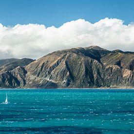 Küste Nordinsel Neuseelands von Thomas Klinder