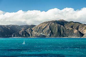 Küste Nordinsel Neuseelands van