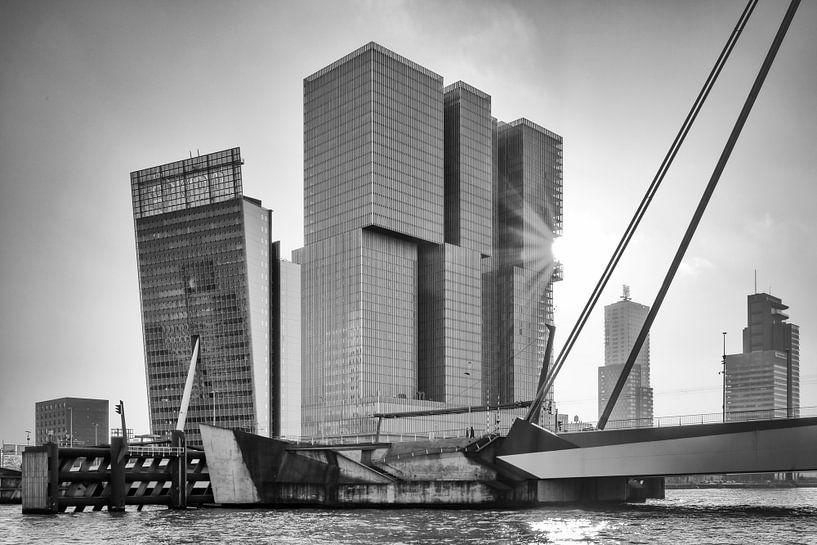 Kop van Zuid (Rotterdam 2018) van Rick van der Poorten