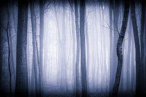 The Mist van Mark Vredeveld