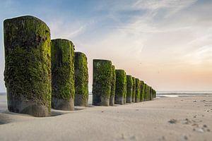 Strand van ameland van Hans Brasz