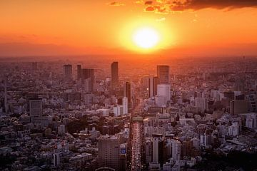Tokyo Sunset  van Sander Peters Fotografie