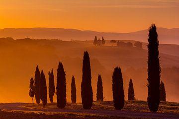 Magische ochtend in Toscane van Filip Staes
