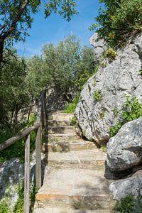stenen trap bij oud kasteel in Spanje