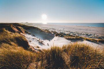 Stuifduinen van Sint Maartenszee Noord Holland van Frank Mosch