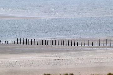Palen in het Quacker water en strand van Lendy Fotografie .
