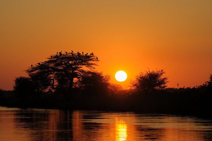 Okavango river bij zonsondergang