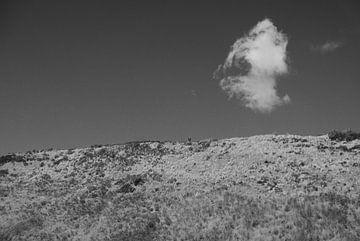Zeeland - Dünen von Maurice Weststrate
