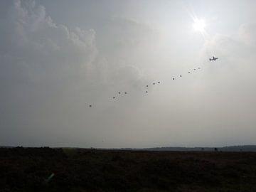 Vallende Parachutisten van Wilbert Van Veldhuizen