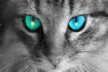 Augen der Katze von Maurice Dawson