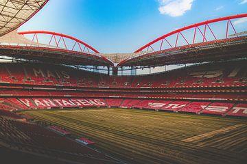 Sport Lisboa Benfica - Estadio da Luz van Michelle LaSanto