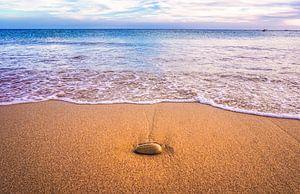 Een kalm en relaxed gevoel op het strand van Nynke Nicolai