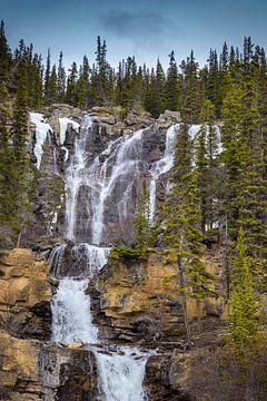 Waterval in Jasper Nationaal Park, Canada van Rietje Bulthuis