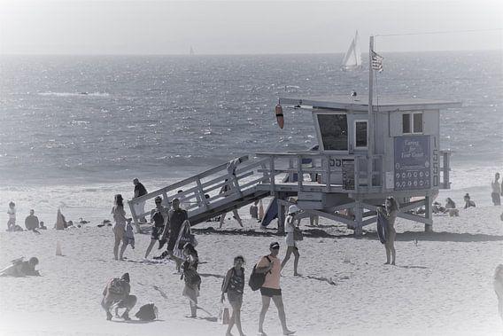 Alerte à la Baie de Santa Monica