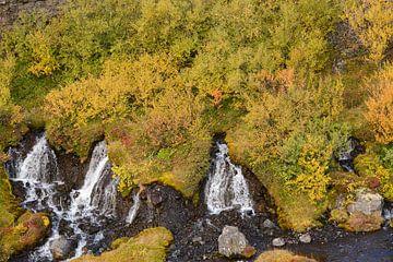 Hraunfossar - IJsland van Barbara Brolsma