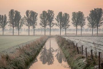 Polderlandschap bij zonsopgang van Wouter Bos