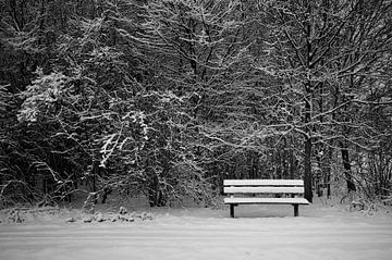 Bankje in een besneeuwd bos von Ruud van der Lubben