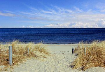 Weg zum Strand sur Ostsee Bilder