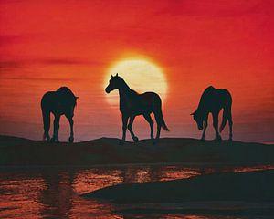 Paarden bij rode zonsondergang